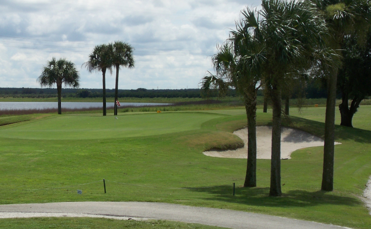Three palm trees stand tall behind a hole at River Greens Golf Course in Avon Park, Florida